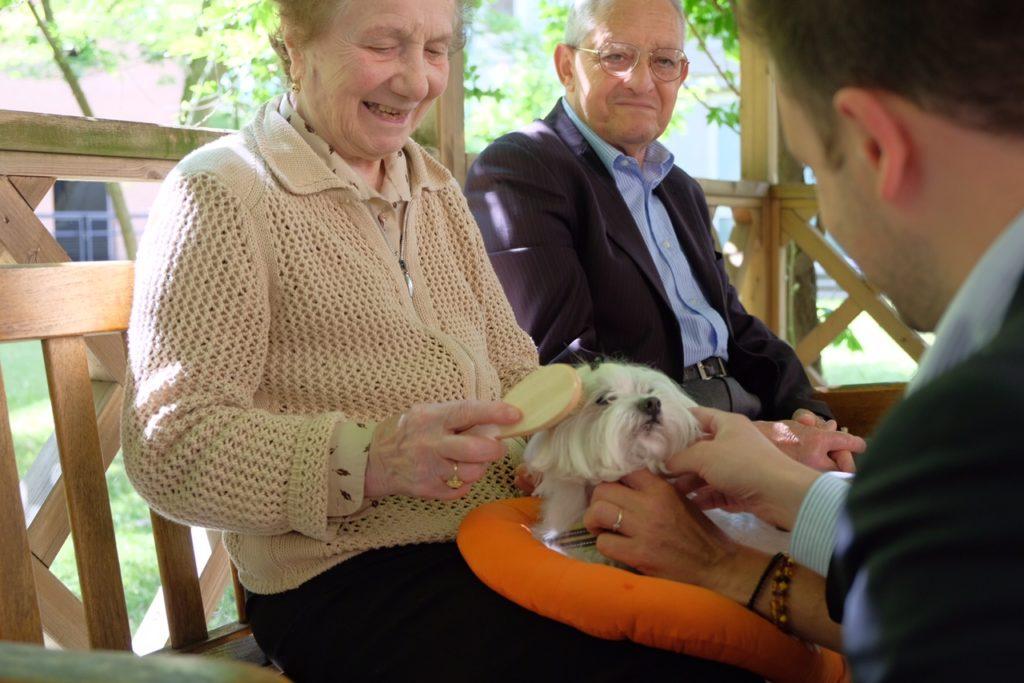 Cinque cani per la pet therapy all'Antica Scuola dei Battuti di Mestre