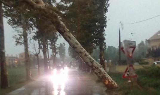 Cavallino-Treporti: apre lo sportello per segnalare i danni dopo il fortunale del 10 agosto